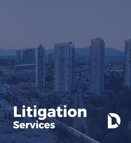 litigation-services